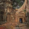 tracks-cambodia-temple-with-don